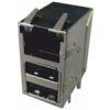 RJ45 mit USB Ports